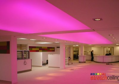 Stretch Ceilings Ltd Office Lighting
