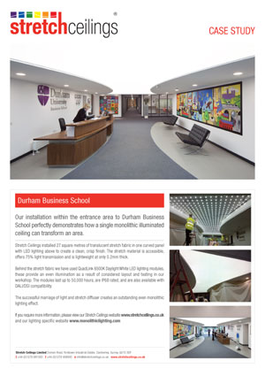 Stretch Ceilings Ltd Durham Business School Case Study